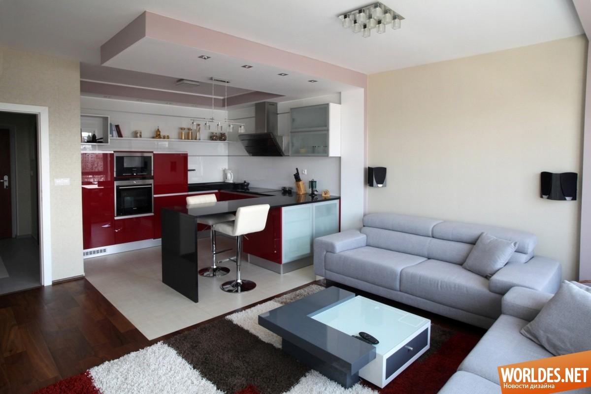 Дизайн зала с кухней в квартире