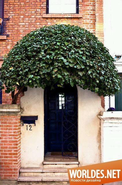 двери входные уличные сафоново