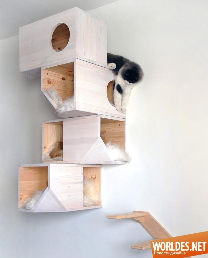 Как сделать модуль для кошки
