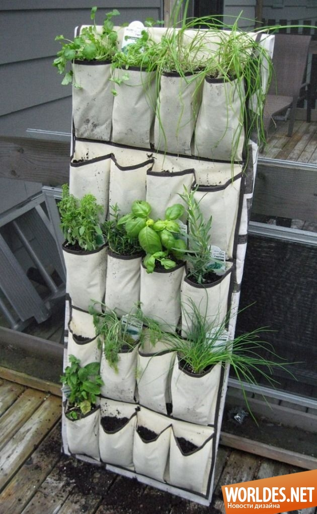 Сад своими руками журнал сайт фото 724