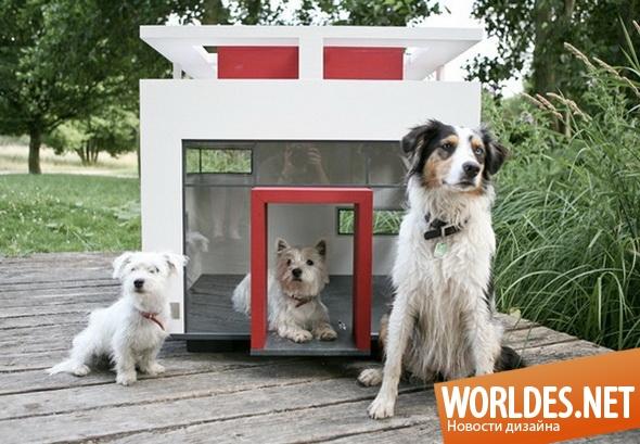 декоративный дизайн, дизайн домика для собаки, домик, домик для собаки, красивый домик для собаки, будка для собаки, современный домик для собаки, стильный домик для собаки