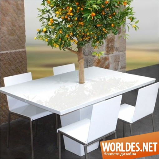 дизайн мебели, дизайн стола, дизайн оригинального стола, стол, столик, оригинальный стол, необычный стол, красивый стол, современный стол, креативный стол, стол с деревом, стол с деревом мандарина